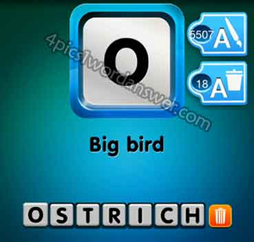 one-clue-big-bird