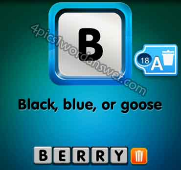 one-clue-black-blue-or-goose