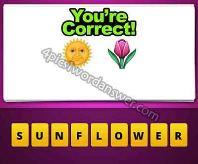 emoji-sun-and-flower