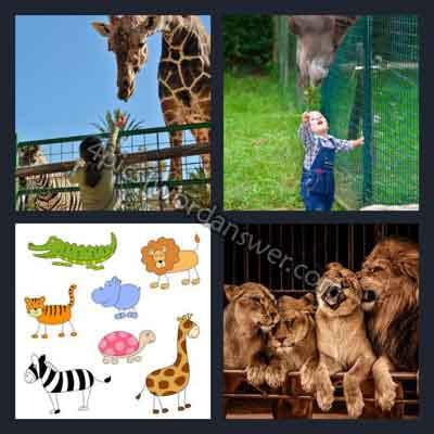 4-pics-1-word-zoo