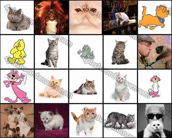 100-pics-cats-level-61-80-answers