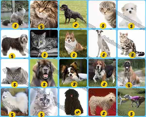 infinite-pics-cats-and-dogs-level-60-79-answers