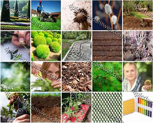 100-pics-gardening-level-61-80-answers