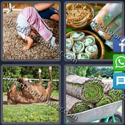 4-pics-1-word-daily-puzzle-feb-12-2016