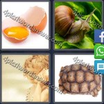 4-pics-1-word-daily-puzzle-mar-13-2016