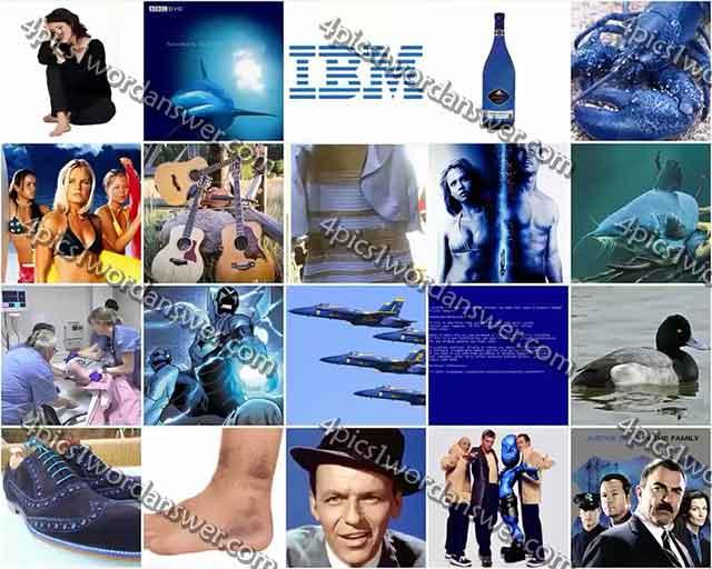100-pics-something-blue-level-41-60-answers