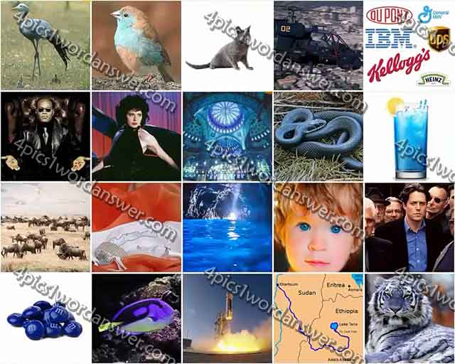 100-pics-something-blue-level-61-80-answers