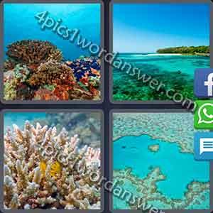 4-pics-1-word-daily-puzzle-november-25-2016