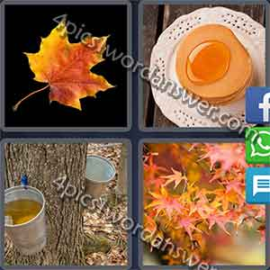 4-pics-1-word-daily-puzzle-february-1-2017