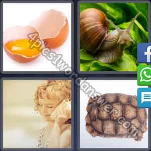 4-pics-1-word-daily-puzzle-april-11-2017