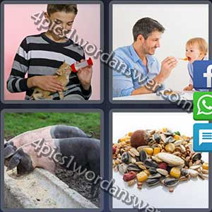 4-pics-1-word-daily-puzzle-april-24-2017