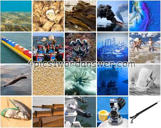 100-pics-in-the-sea-level-41-60-answers