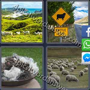 4-pics-1-word-daily-puzzle-august-28-2017