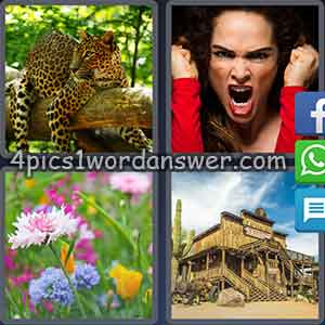 4-pics-1-word-daily-puzzle-december-10-2017