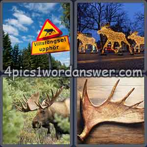 4-pics-1-word-daily-puzzle-january-1-2018