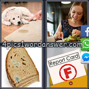 4-pics-1-word-daily-puzzle-february-16-2018