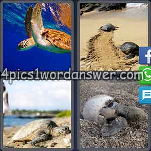 4-pics-1-word-daily-puzzle-april-22-2018