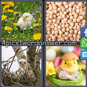 4-pics-1-word-daily-puzzle-march-16-2018