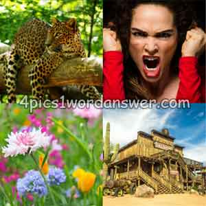 4-pics-1-word-daily-puzzle-january-27-2019
