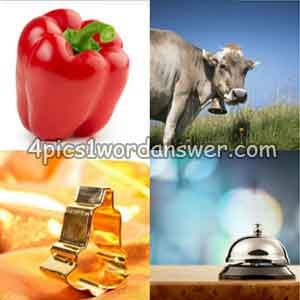 4-pics-1-word-daily-puzzle-march-14-2019
