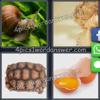 4-pics-1-word-daily-puzzle-august-18-2019