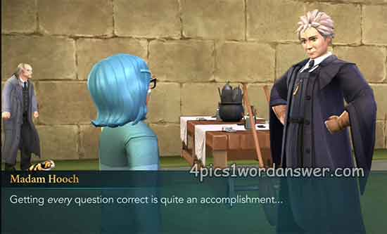 Madam-Hooch-Quidditch-Question