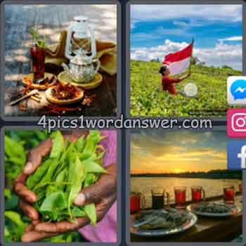 4-pics-1-word-daily-bonus-puzzle-february-1-2020
