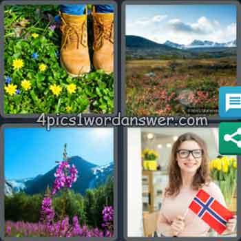4-pics-1-word-daily-bonus-puzzle-january-26-2020