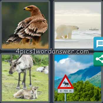 4-pics-1-word-daily-puzzle-january-6-2020