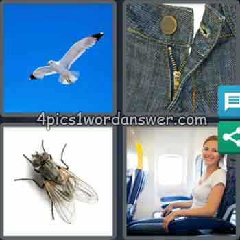 4-pics-1-word-daily-puzzle-february-22-2020