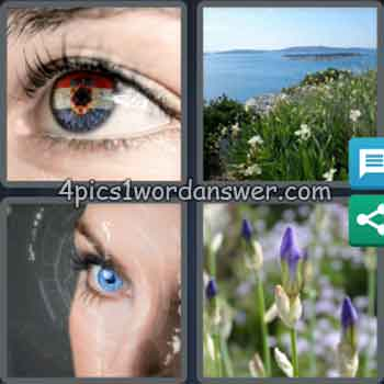 4-pics-1-word-daily-bonus-puzzle-july-1-2020