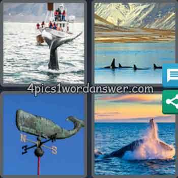 4-pics-1-word-daily-bonus-puzzle-august-12-2020