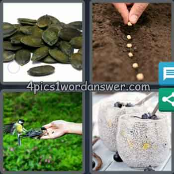 4-pics-1-word-daily-bonus-puzzle-september-29-2020