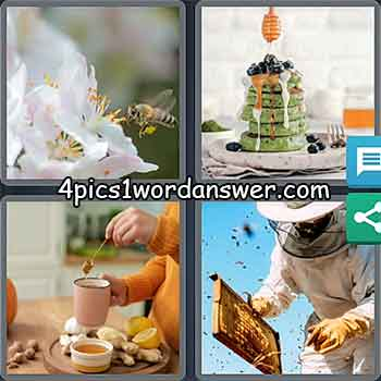 4-pics-1-word-daily-puzzle-february-3-2021