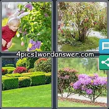 4-pics-1-word-daily-bonus-puzzle-march-5-2021