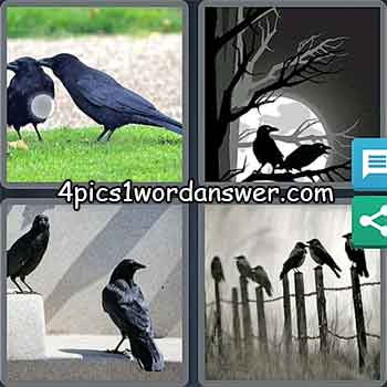 4-pics-1-word-daily-puzzle-march-4-2021