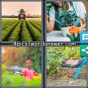 4-pics-1-word-daily-bonus-puzzle-may-25-2021