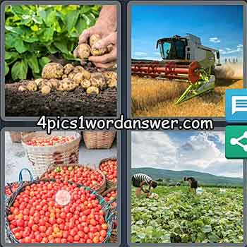 4-pics-1-word-daily-puzzle-may-10-2021