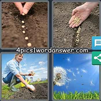 4-pics-1-word-daily-puzzle-may-11-2021