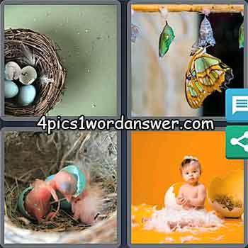 4-pics-1-word-daily-puzzle-may-12-2021
