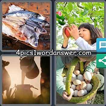 4-pics-1-word-daily-puzzle-may-13-2021