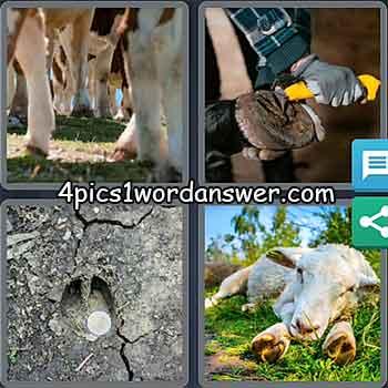 4-pics-1-word-daily-puzzle-may-14-2021
