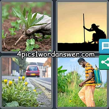 4-pics-1-word-daily-puzzle-may-26-2021