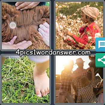 4-pics-1-word-daily-puzzle-may-8-2021