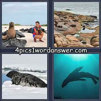 4-pics-1-word-daily-puzzle-june-22-2021