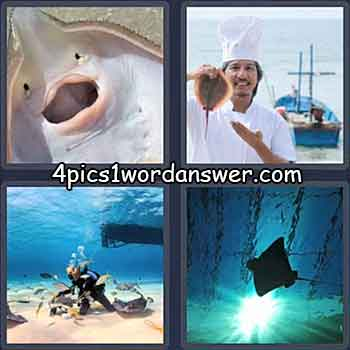 4-pics-1-word-daily-puzzle-june-8-2021