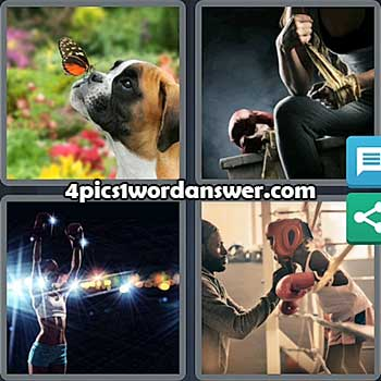 4-pics-1-word-daily-puzzle-july-15-2021