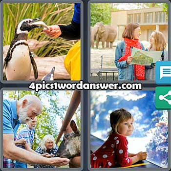 4-pics-1-word-daily-puzzle-august-4-2021